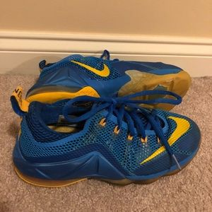 Boys Nike LeBrons